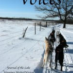 Voices Volume Eleven, Number Two