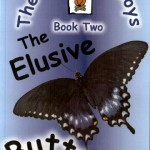The Elusive Butterfly – The Campire Boys Book Two